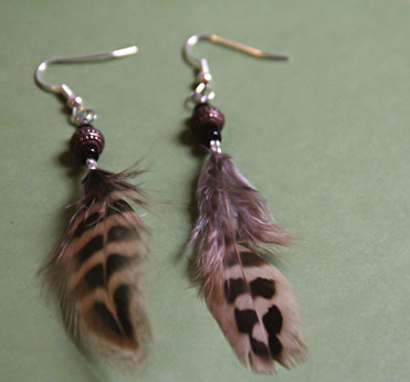 the feathers (2)
